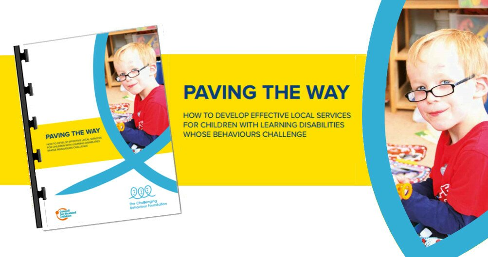 Promotional image for the free Paving the Way report